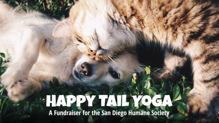 Happy Tail Yoga, a Fundraiser for the San Diego Humane Society